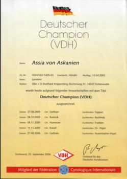 German Champion (VDH)