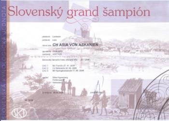 Slovak Grand Champion